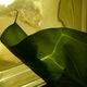 ABELOUS-AZEMA - A la fenêtre