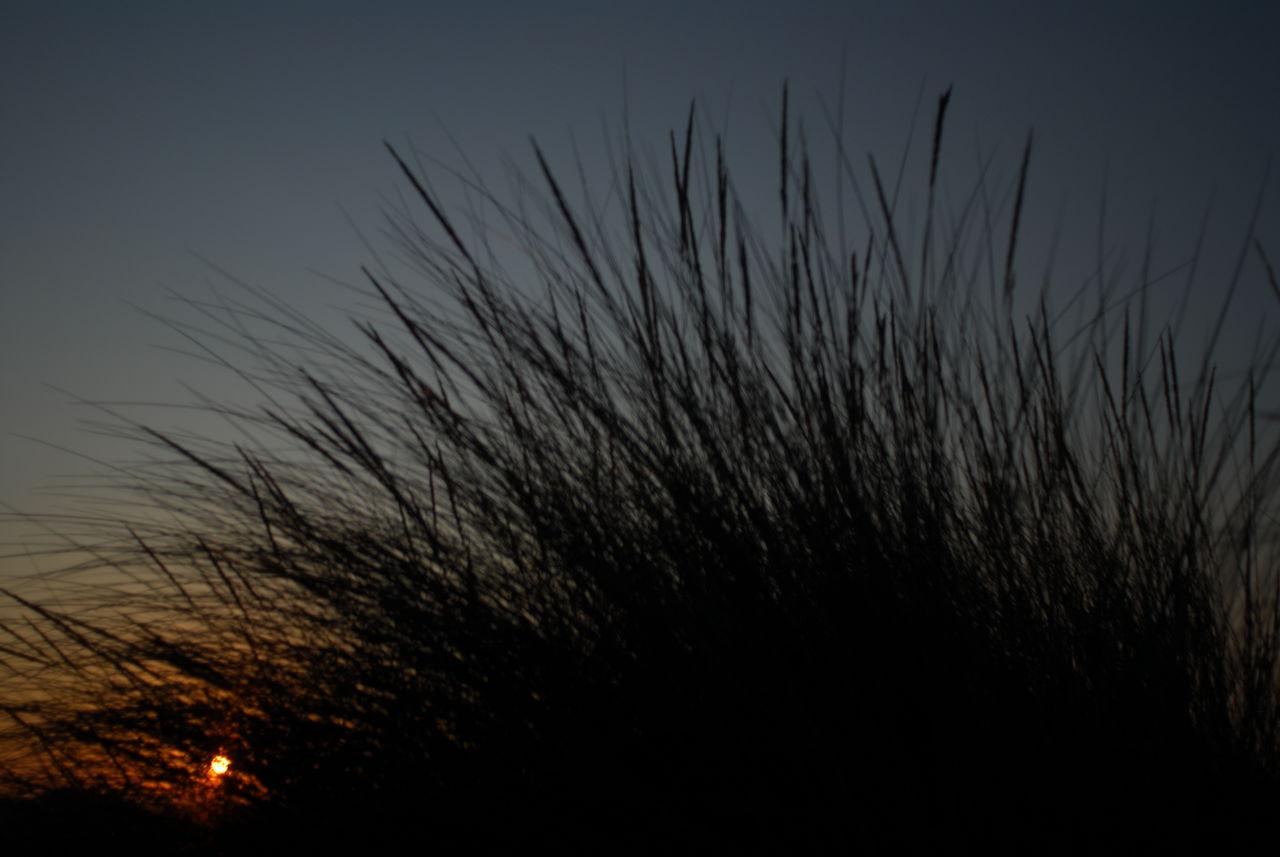 ArtPhoto soleil nocturne