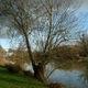 AZEMA Jean-Marc - 2020-le lac d'Azay sur Thouet