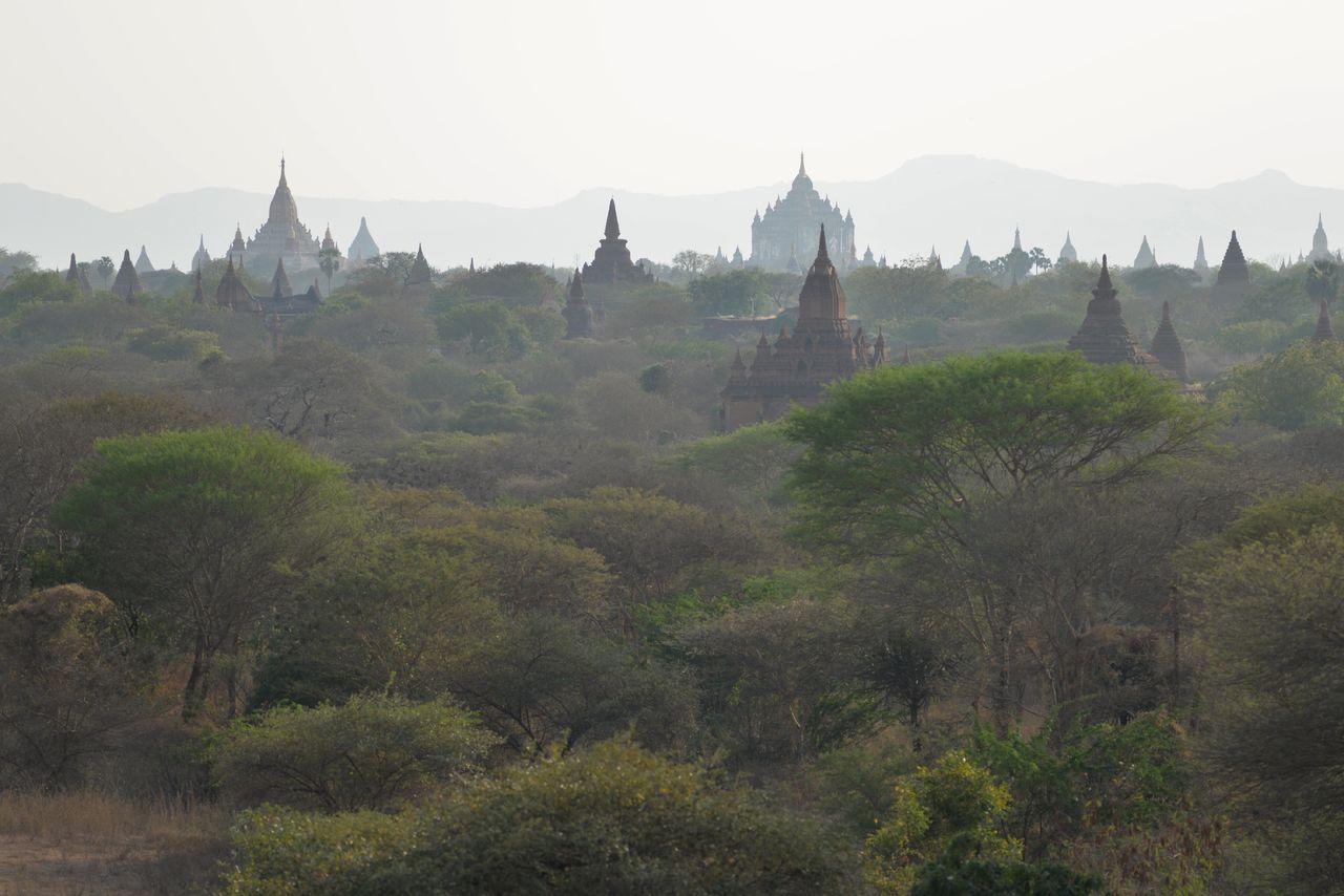 BARRE Yvon Bagan B 2016