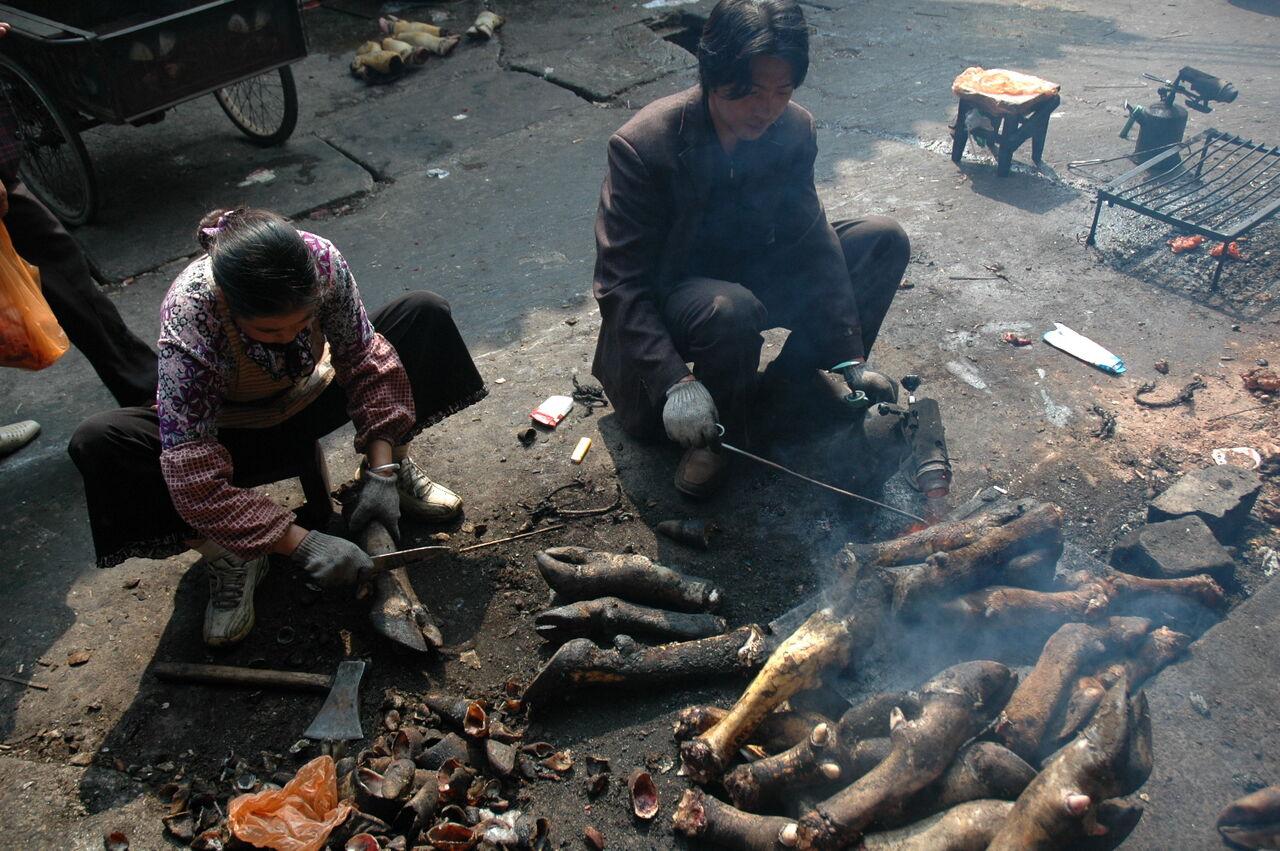 BARRE Yvon Chine 2007 593