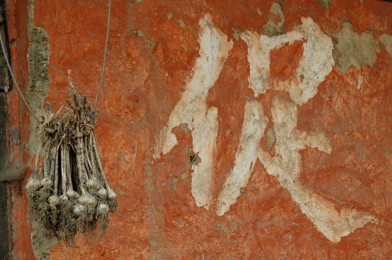 BARRE Yvon yunnan -ail