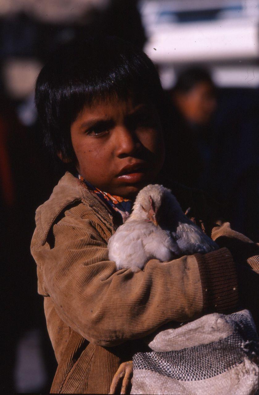 BARRE Yvon Equateur-45