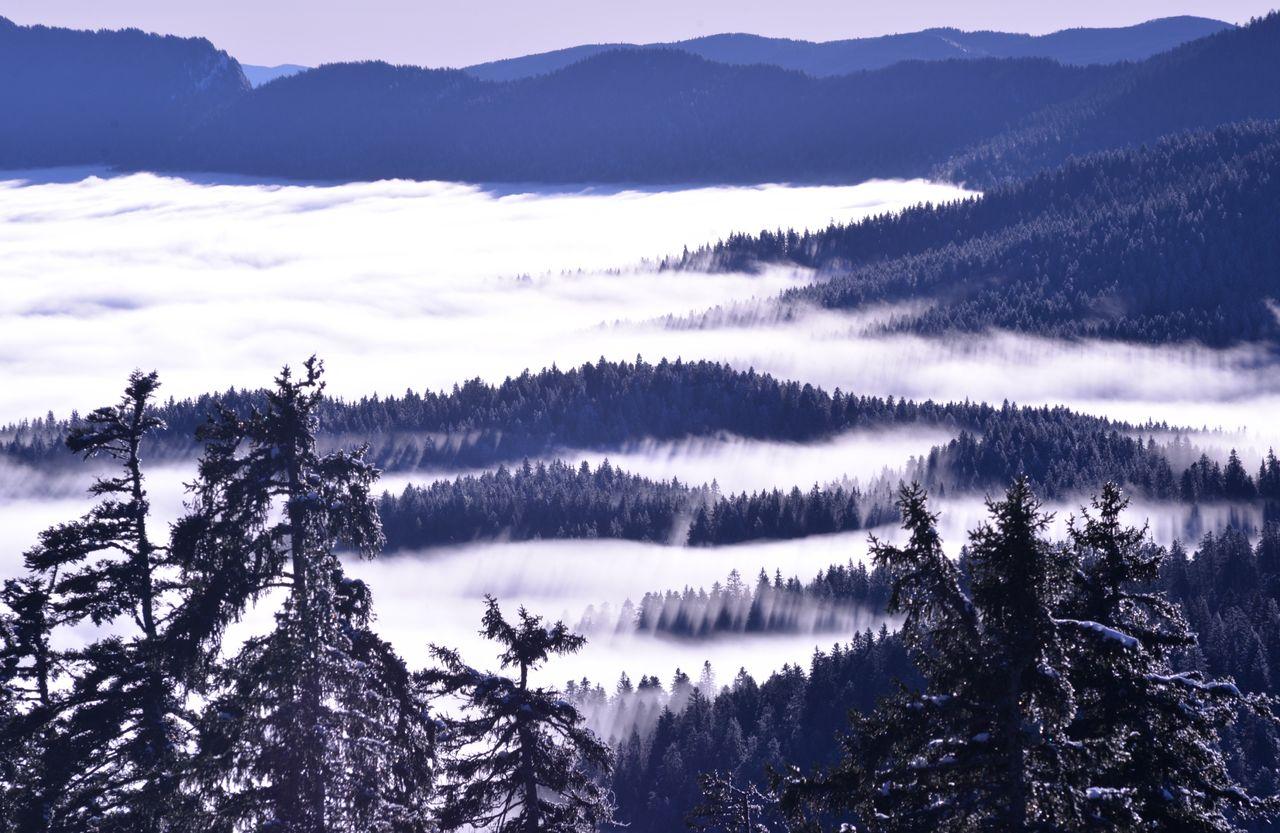 BARRE Yvon Autrans sous la brume