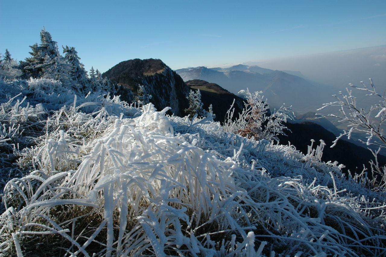 BARRE Yvon Vercors hiver (2)