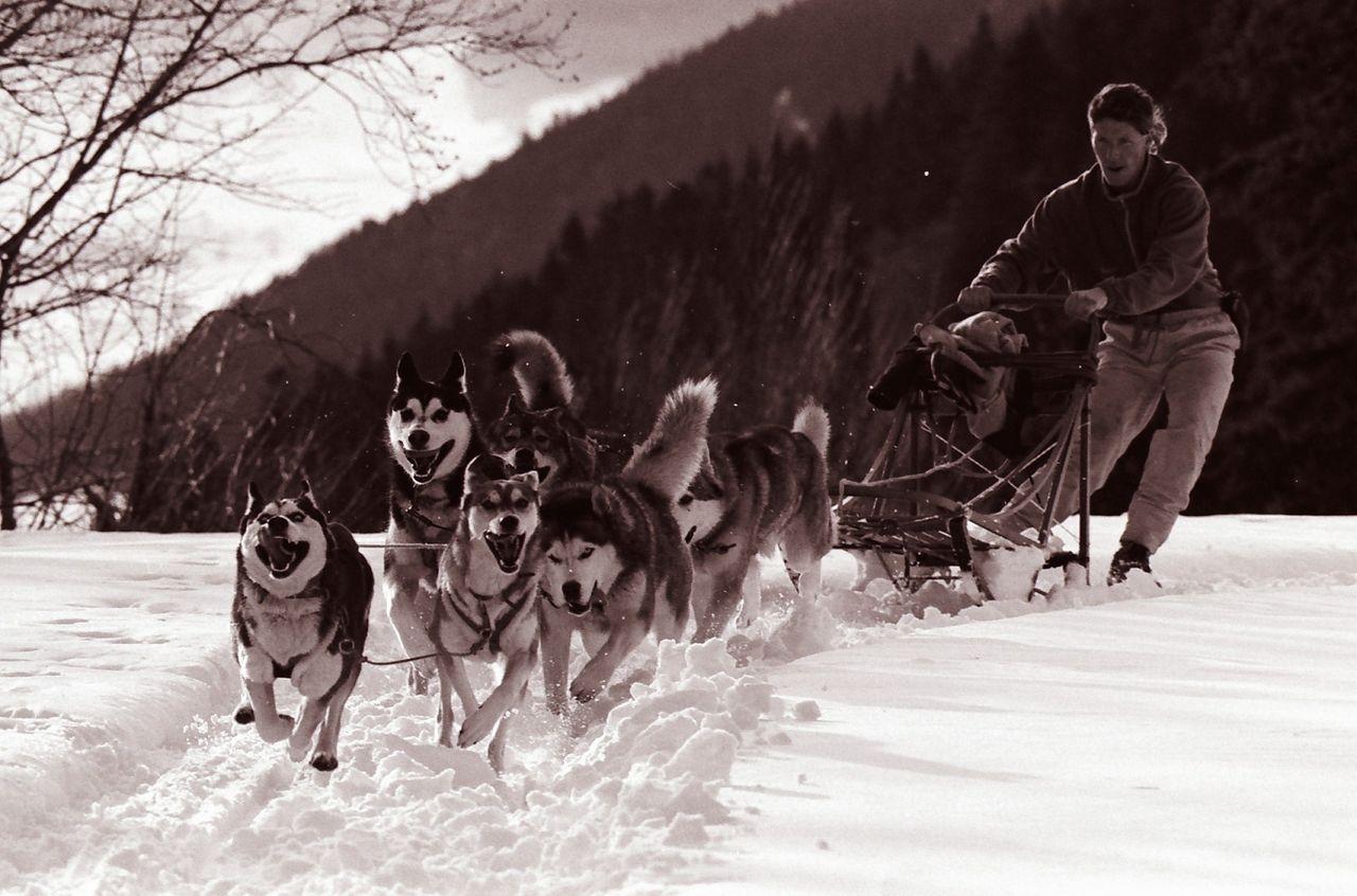 BARRE Yvon Vercors hiver (8)