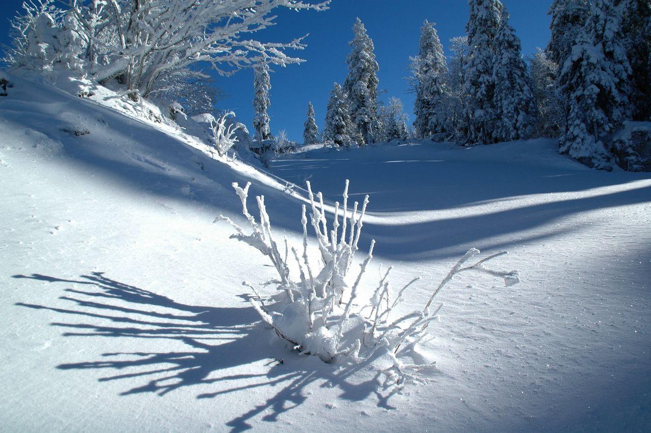 BARRE Yvon Vercors hiver (9)
