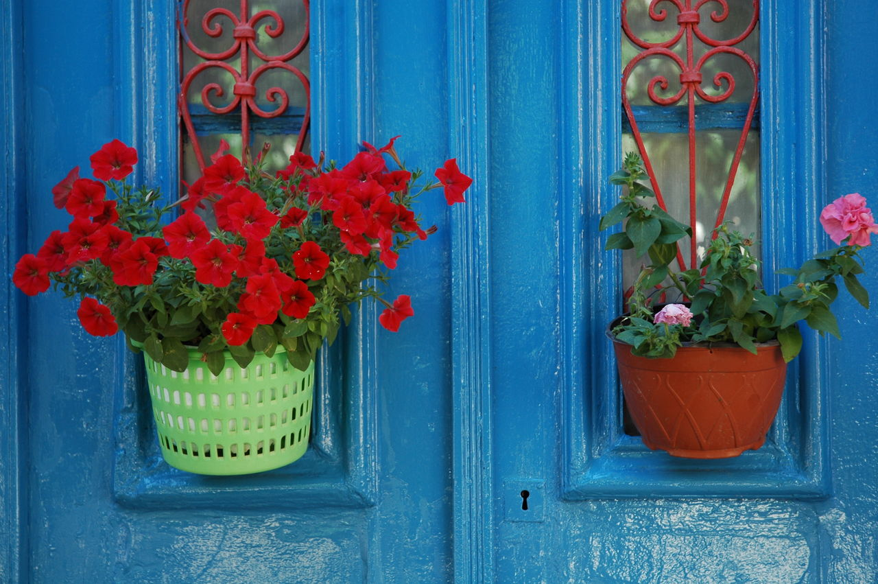 BARRE Yvon Porte fleurie
