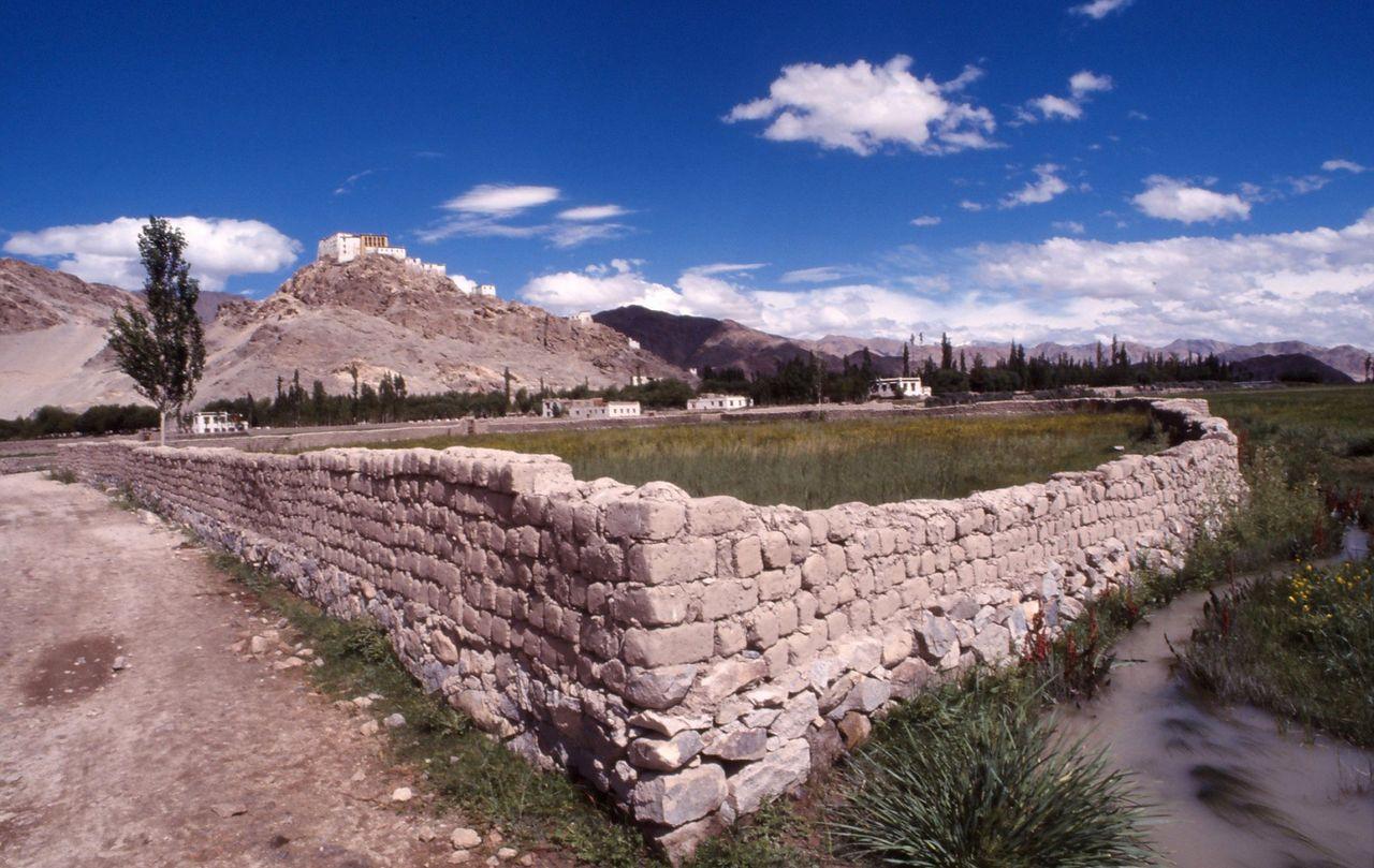 BARRE Yvon Ladakh  (6)