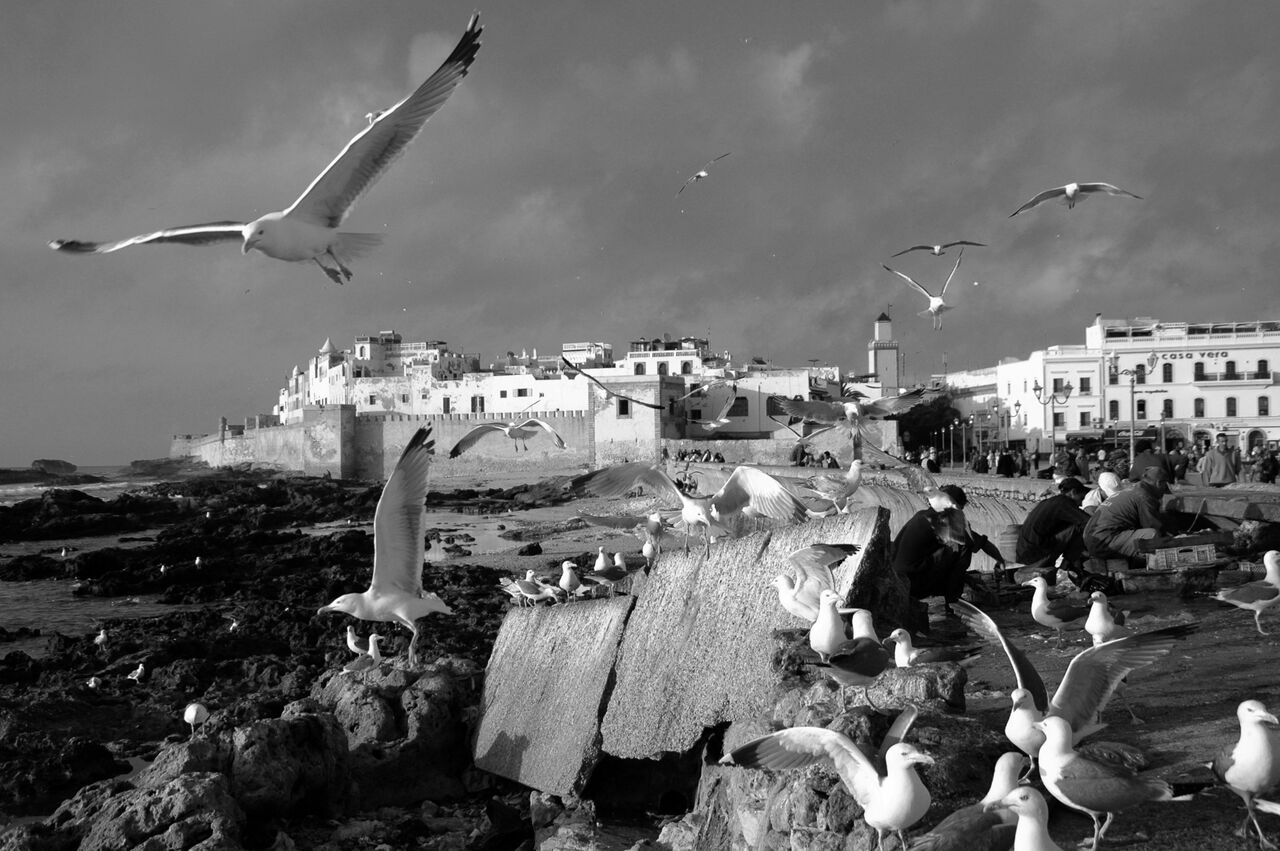 BARRE Yvon Essaouira Maroc