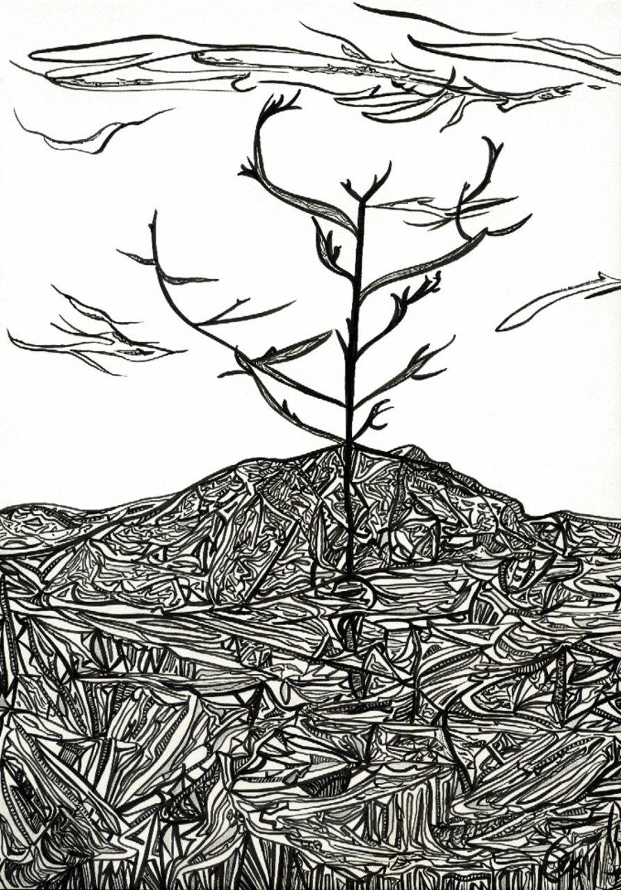 Basile Châtelain arbre en hiver