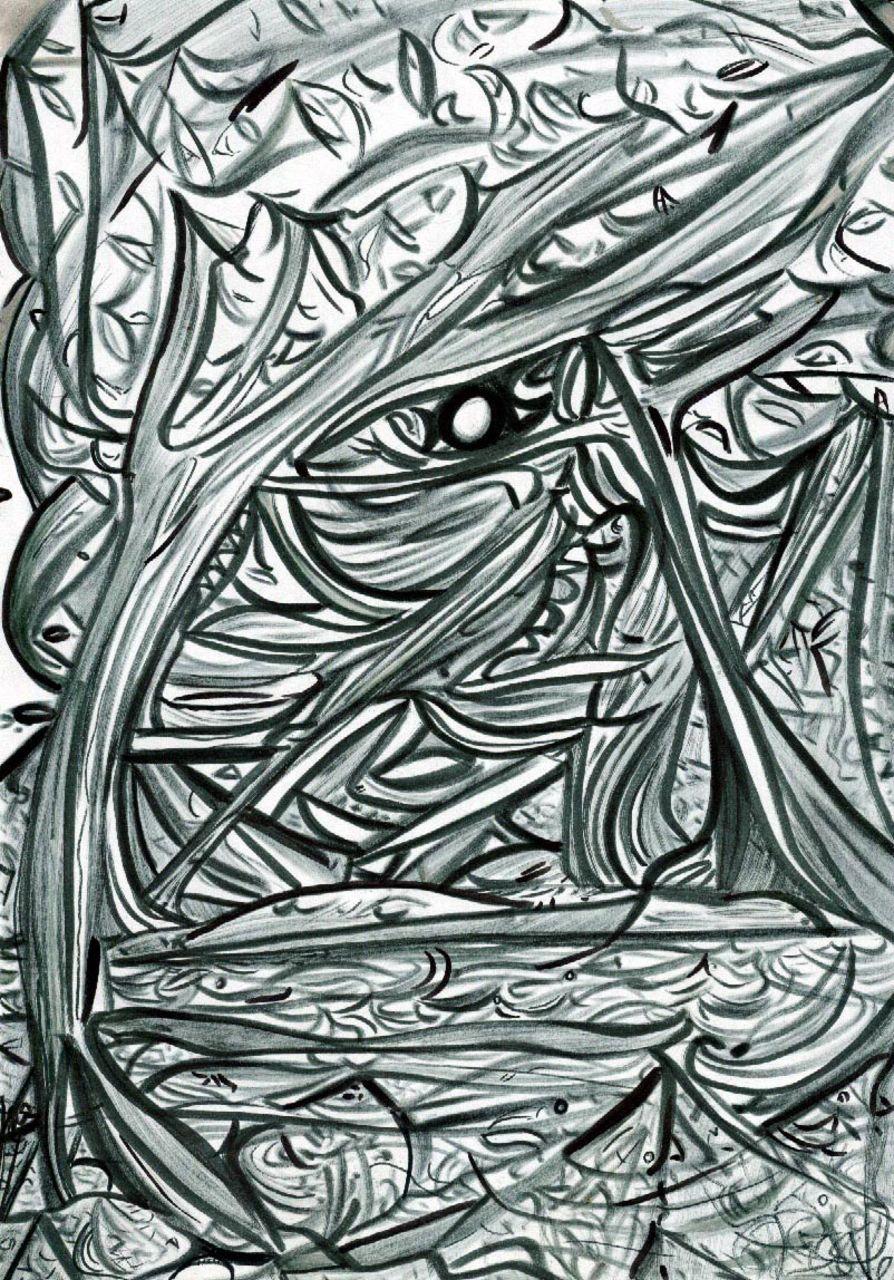Basile Châtelain forêt oeil de poisson