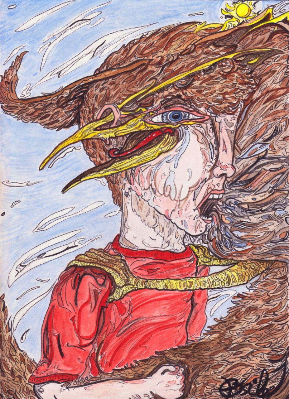 Basile Châtelain quelque oiseau de colère