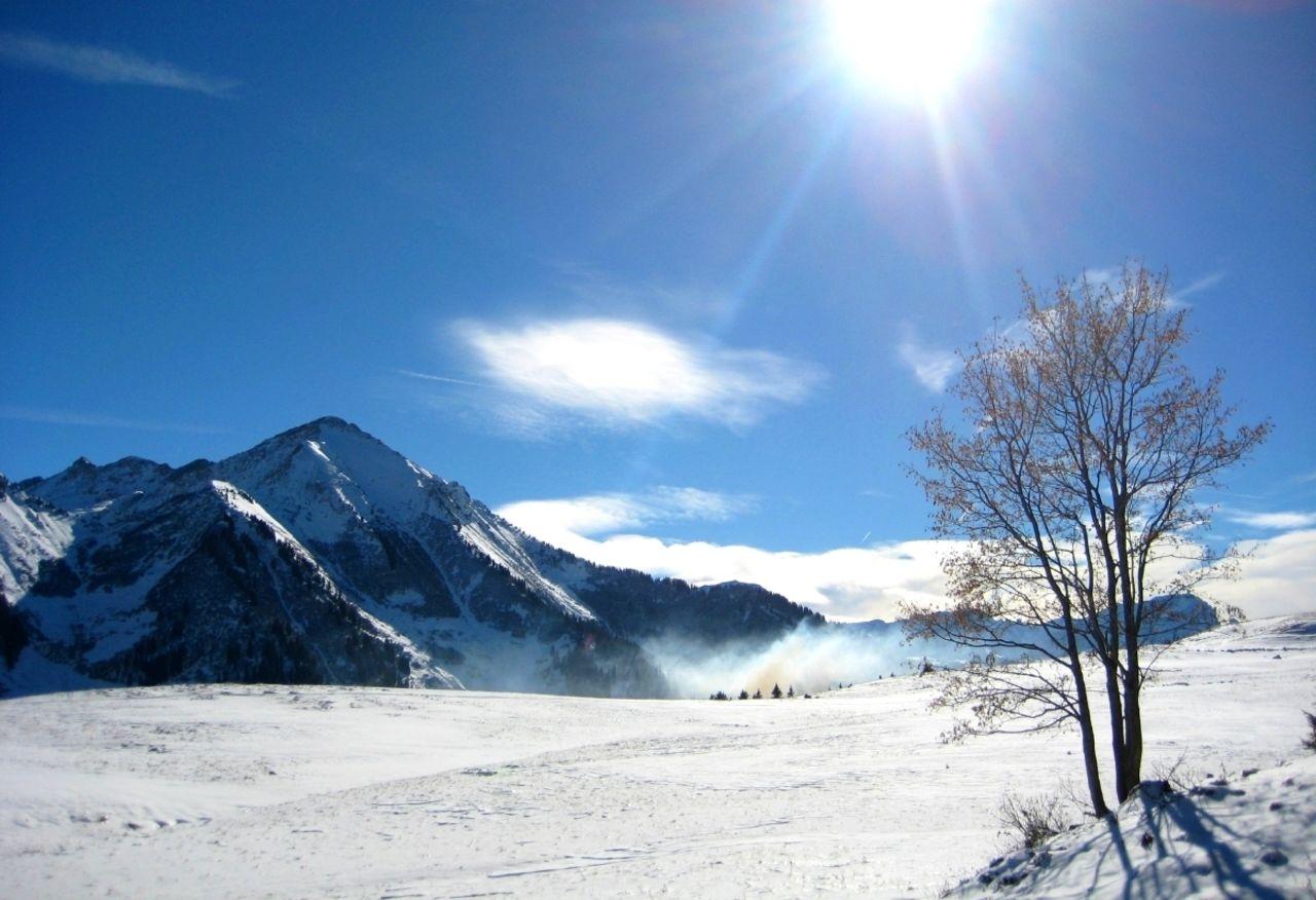 Basile Châtelain félicité hivernale