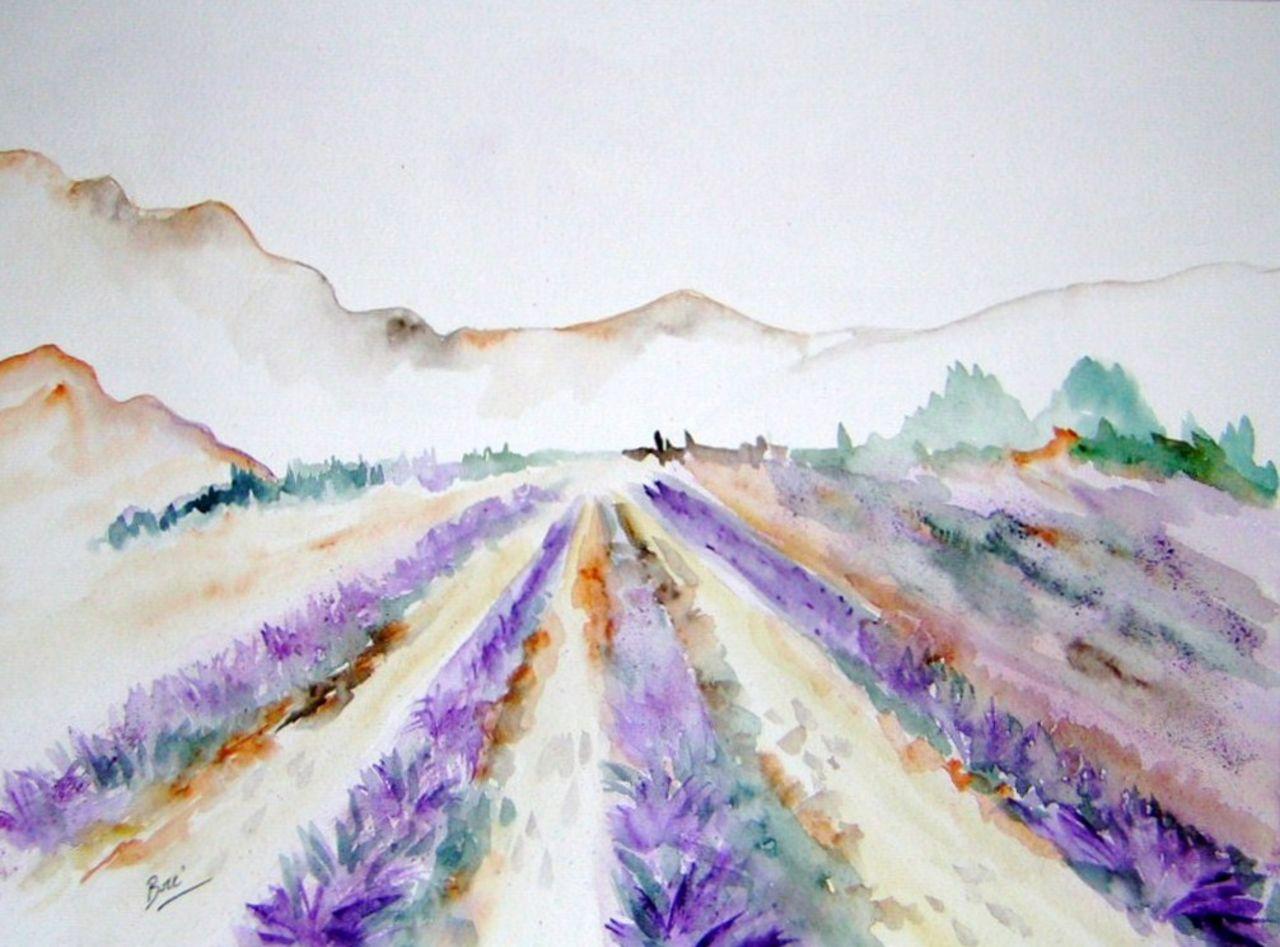 Brigitte Noelle champs de lavandes