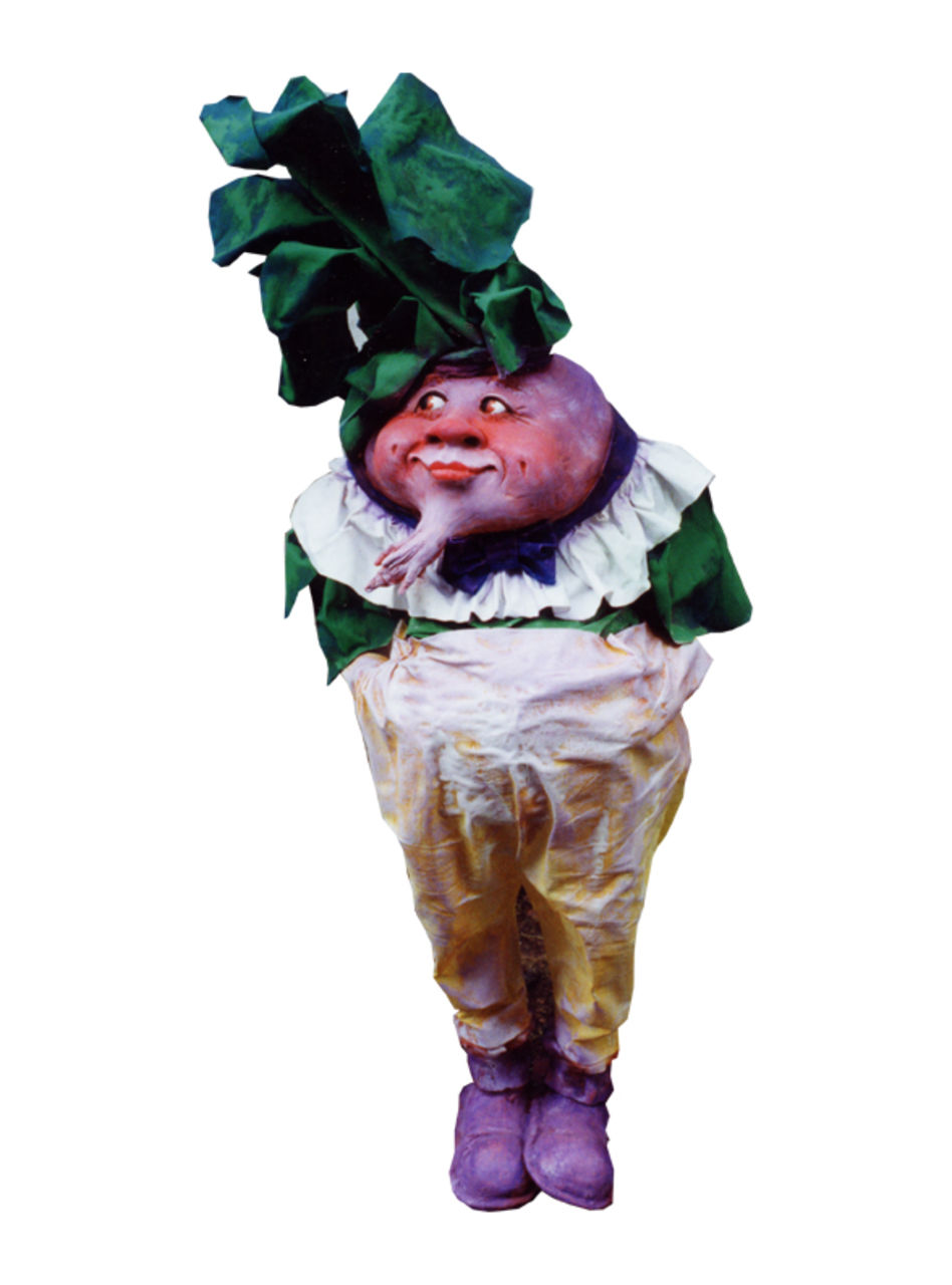 catherine boulogne TURNIP