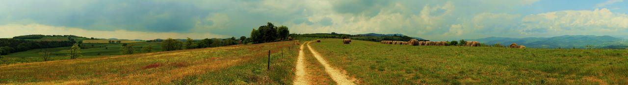 Catherine GRENOUILLAT Tous les chemins mènent à Tournon - Panoramique