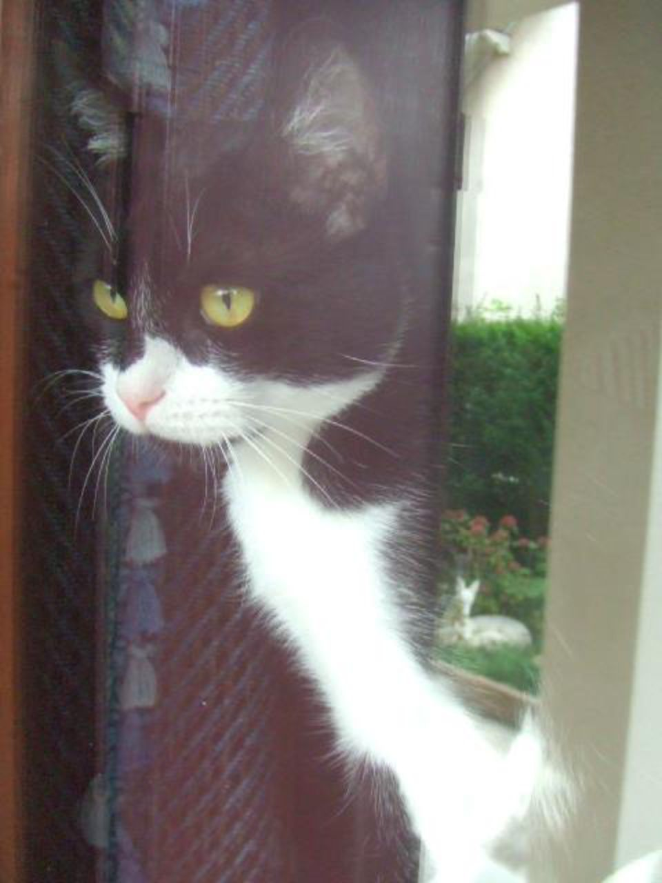 Christine Arinki à la fenêtre