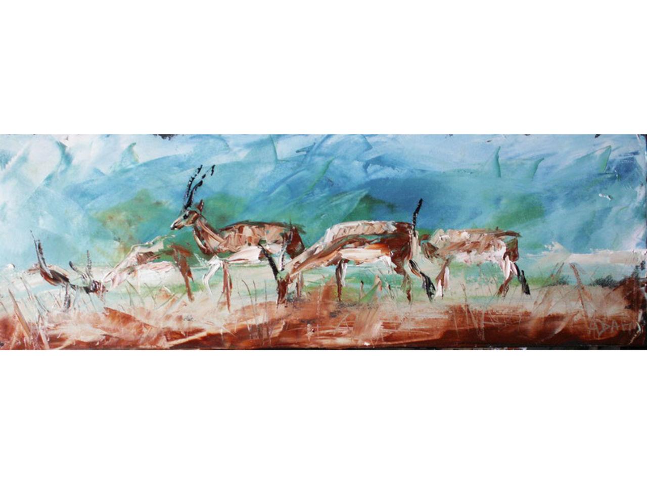 christophe ADAM Les gazelles