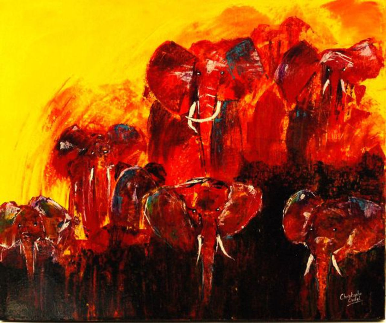 Christophe Cudel Elephants