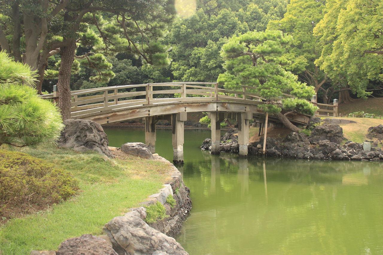 Claire Lemière Jardin japonais