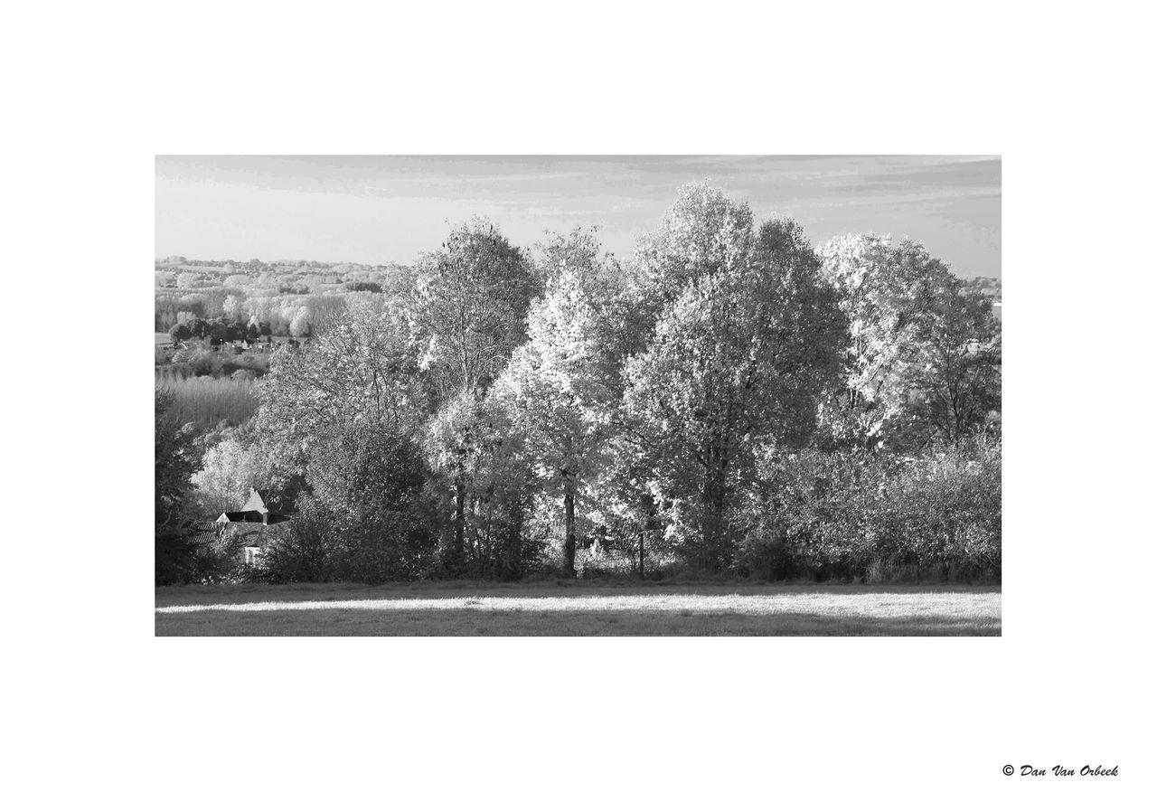 Dan Van Orbeek IMG_1661 copie-Récupéré