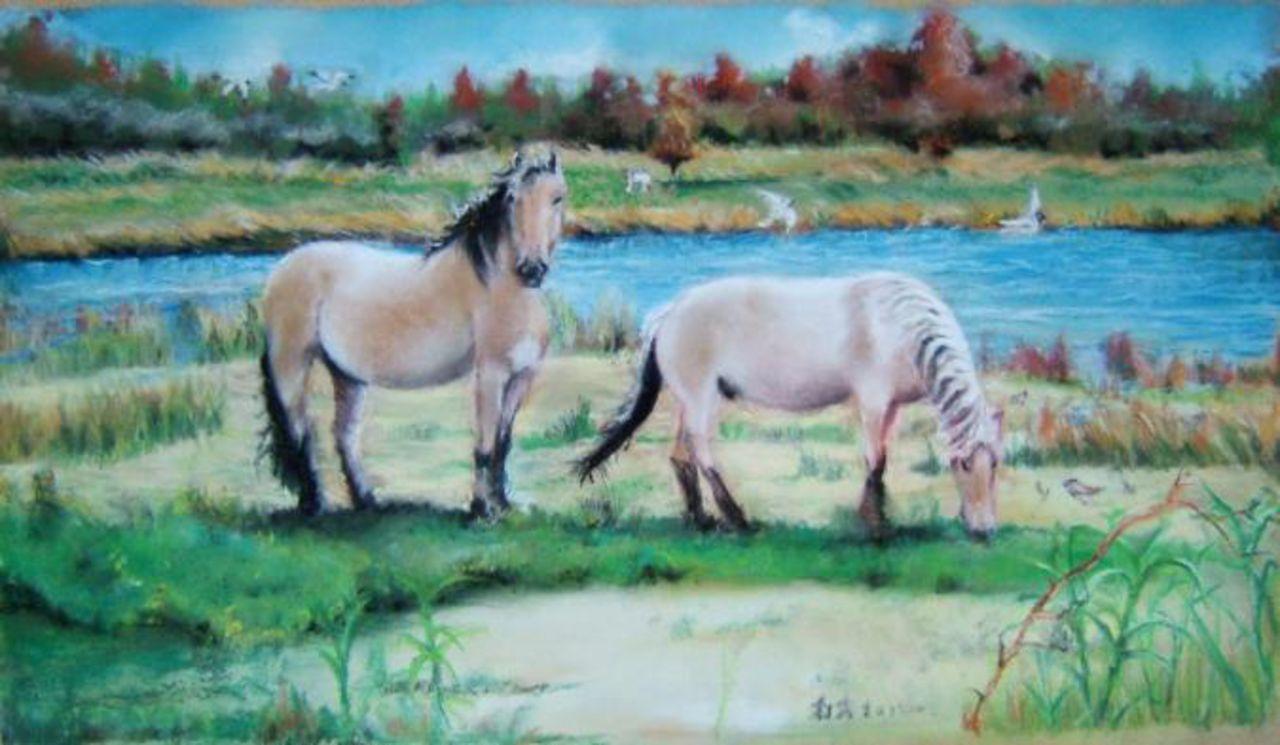 Daniel Riba Les chevaux