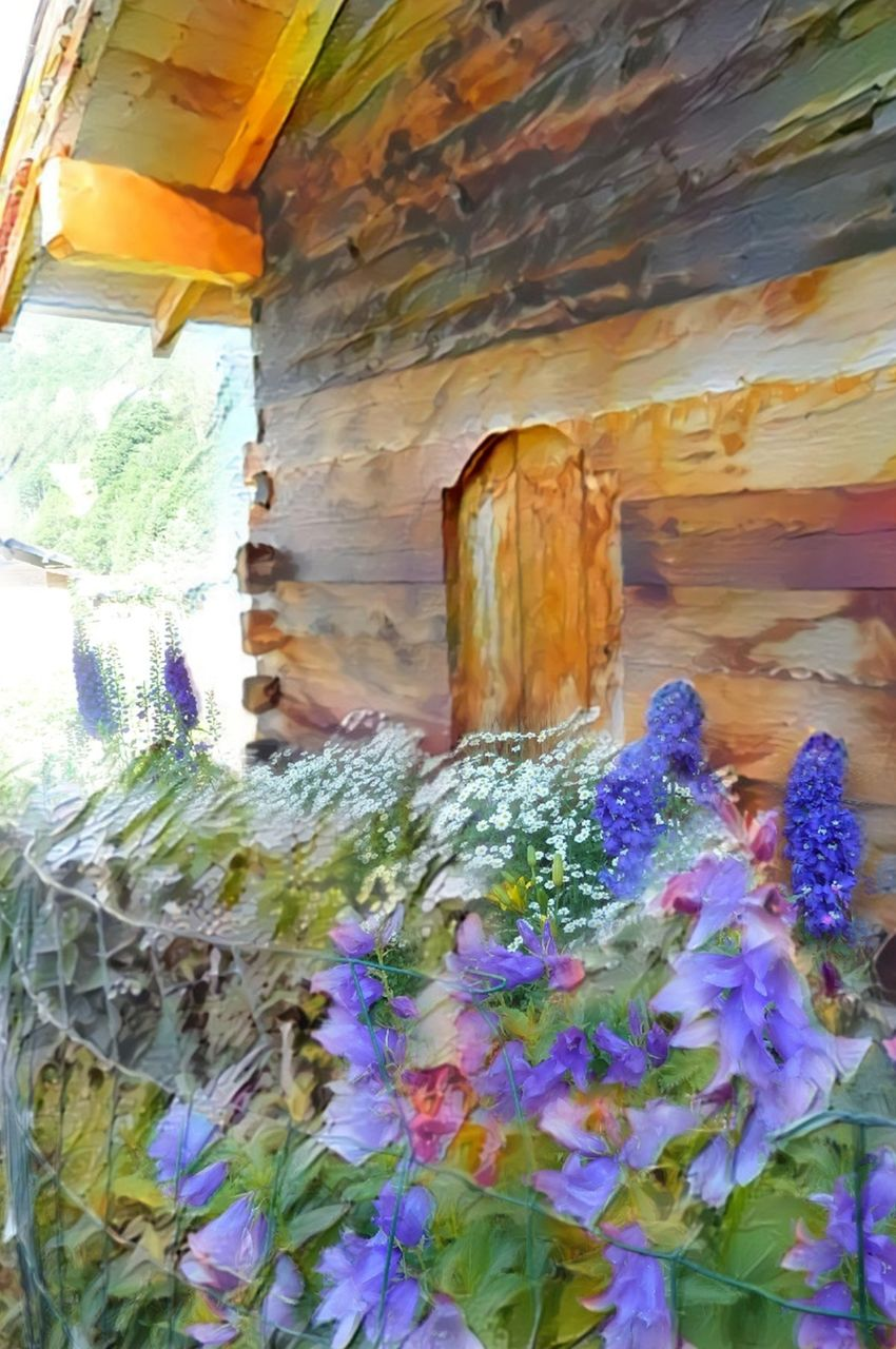 Danielle Arnal fleurs de montagne N2