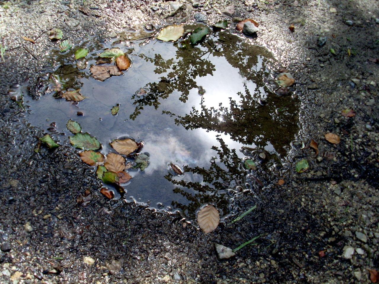 Danielle Bellefroid Reflets nuageux