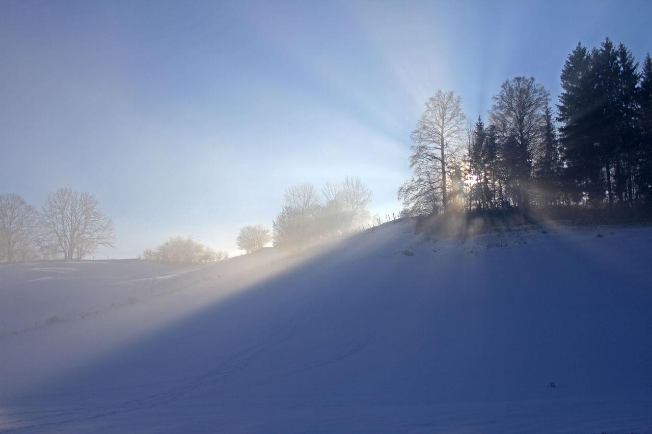 Didier Harmant Rayons de soleil en hiver