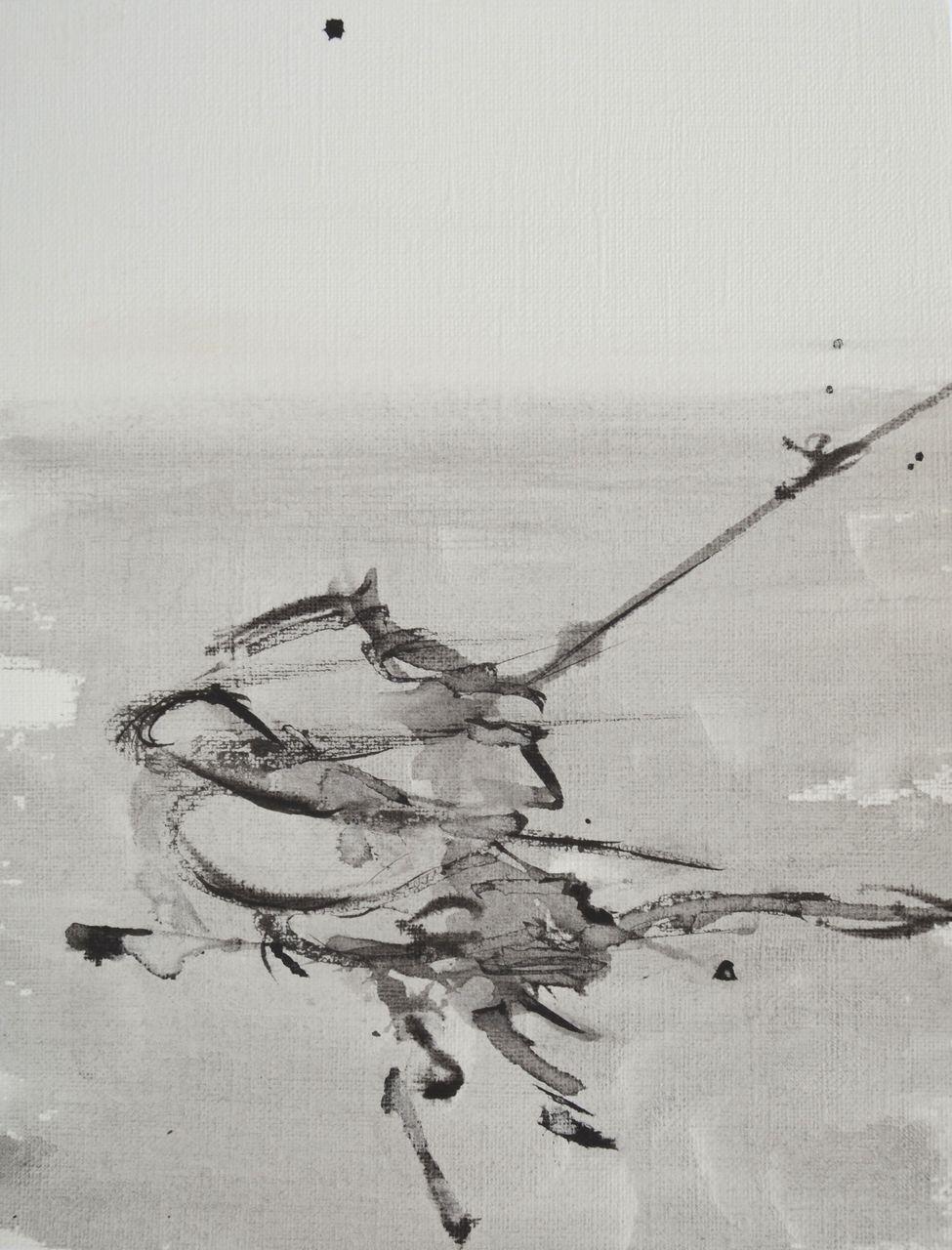 Elisabeth Mounic  Don Quichotte