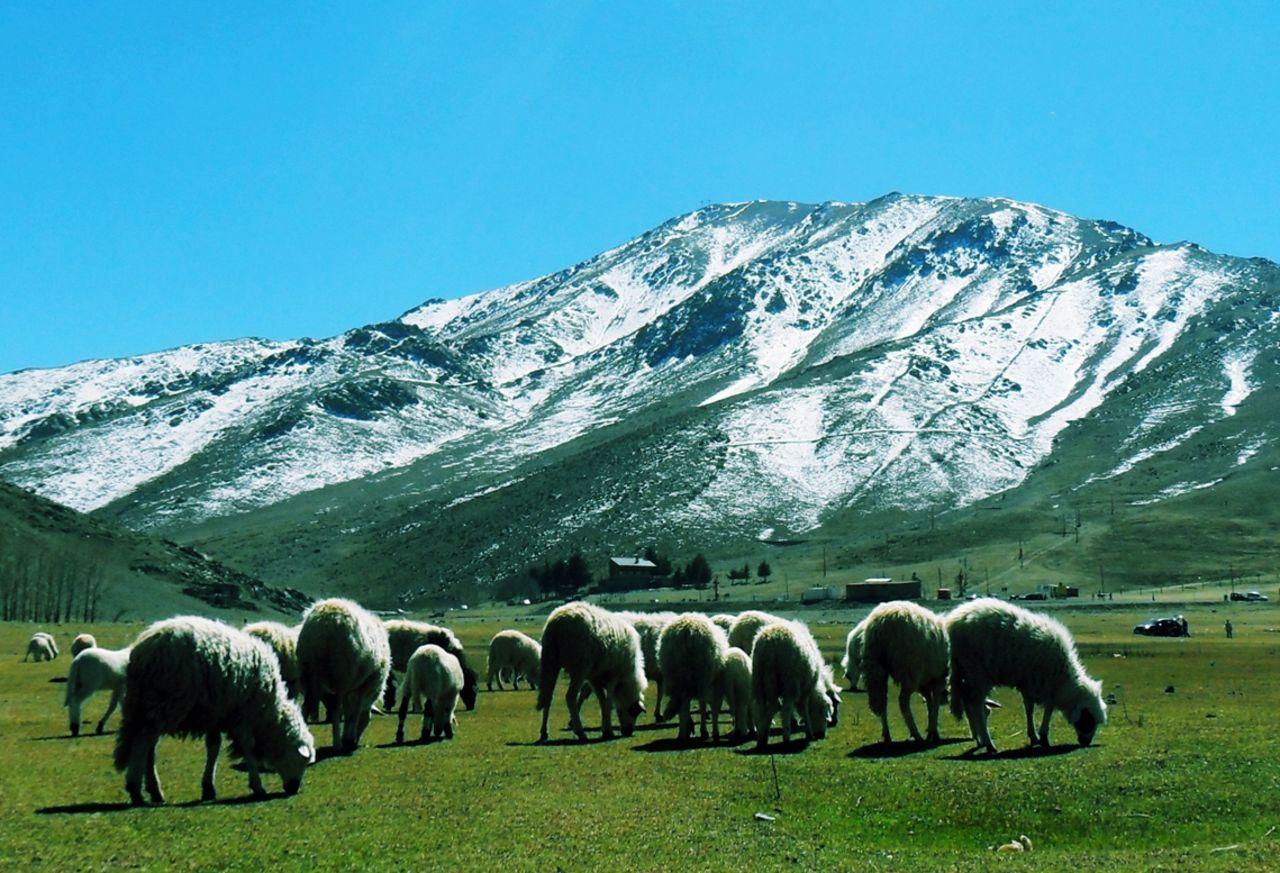 Fatima-Ezzahra Zoubir Okimden Mountains