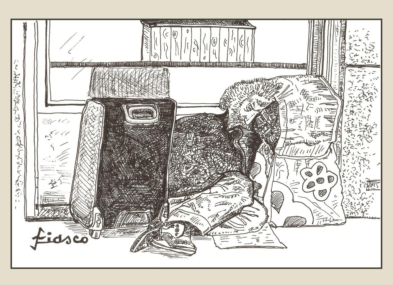 FIASCO La sieste