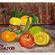 FIASCO - Fruits