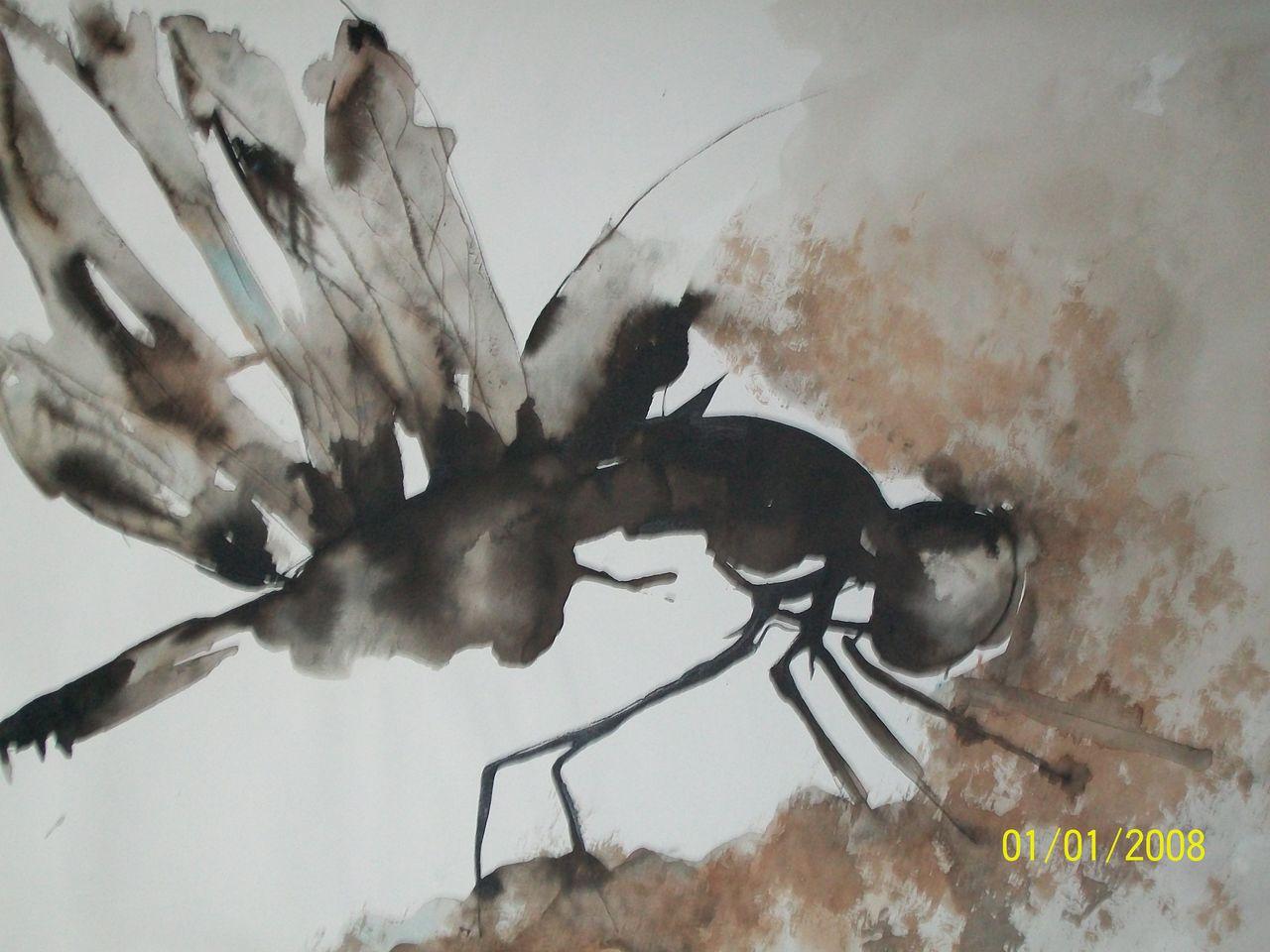 genevieve Bonnet-Cadith le moustique