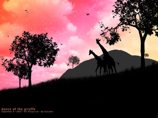 Wallpaper dance of the giraffe