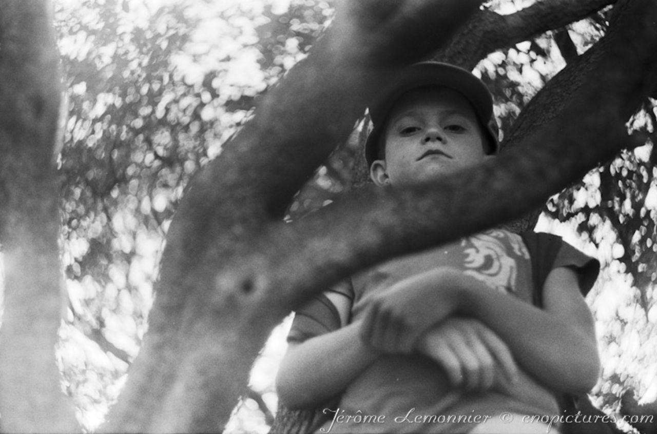 Jérôme Lemonnier Enfant dans l'arbre