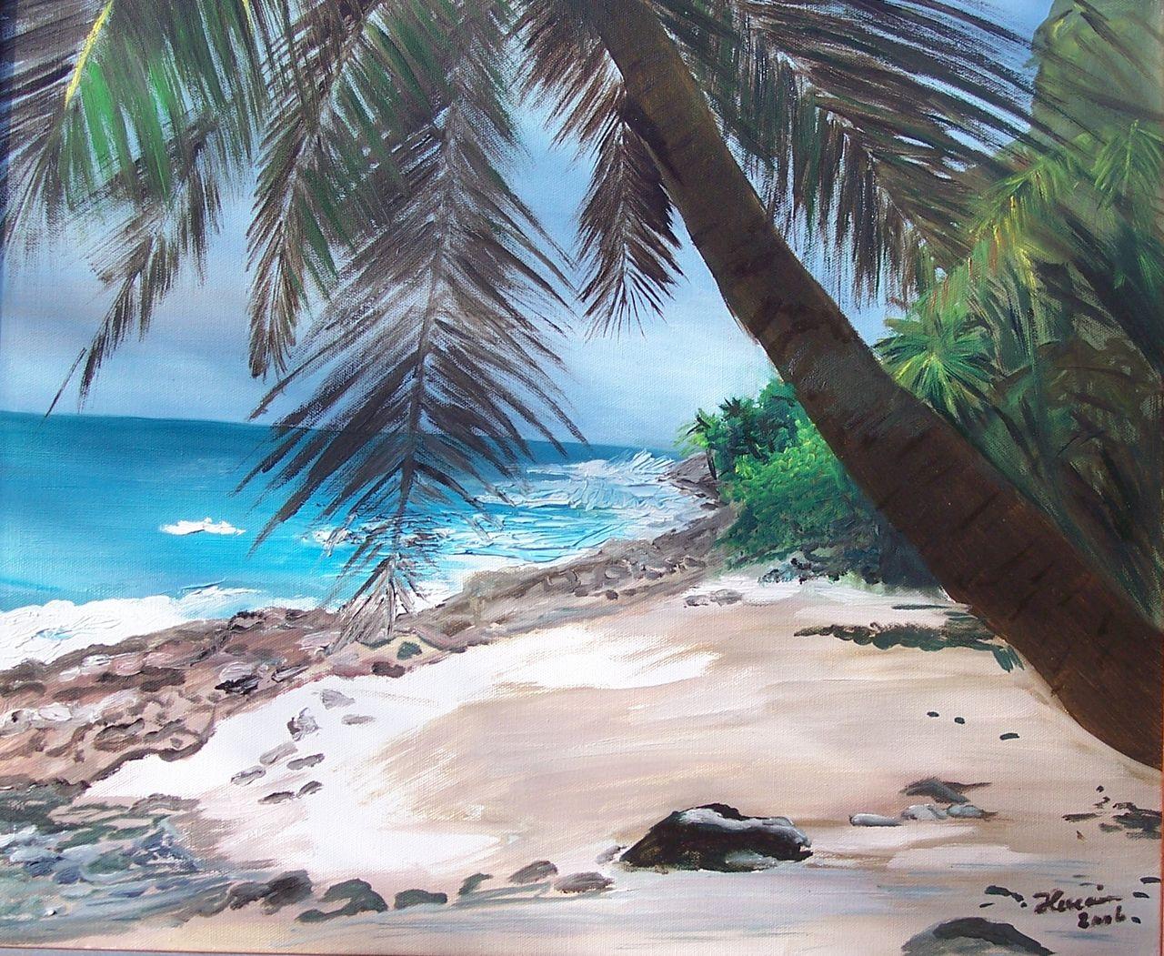 Jocelyne LUCAIN Plage de l'Ile Saint Joseph (Guyane)