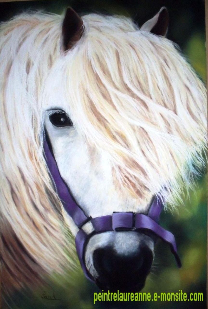 laure-anne barbier poney mauve