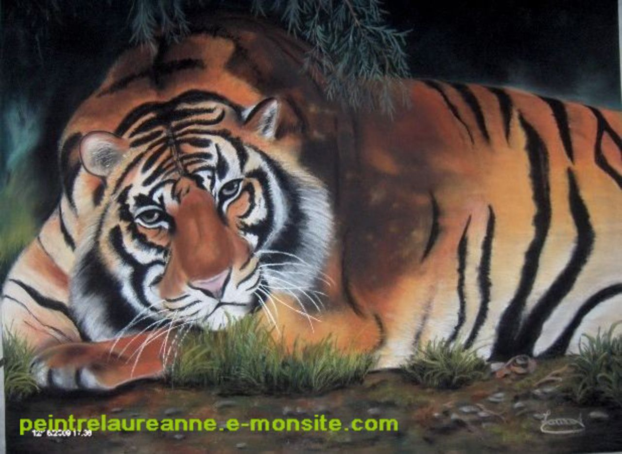 laure-anne barbier tigre