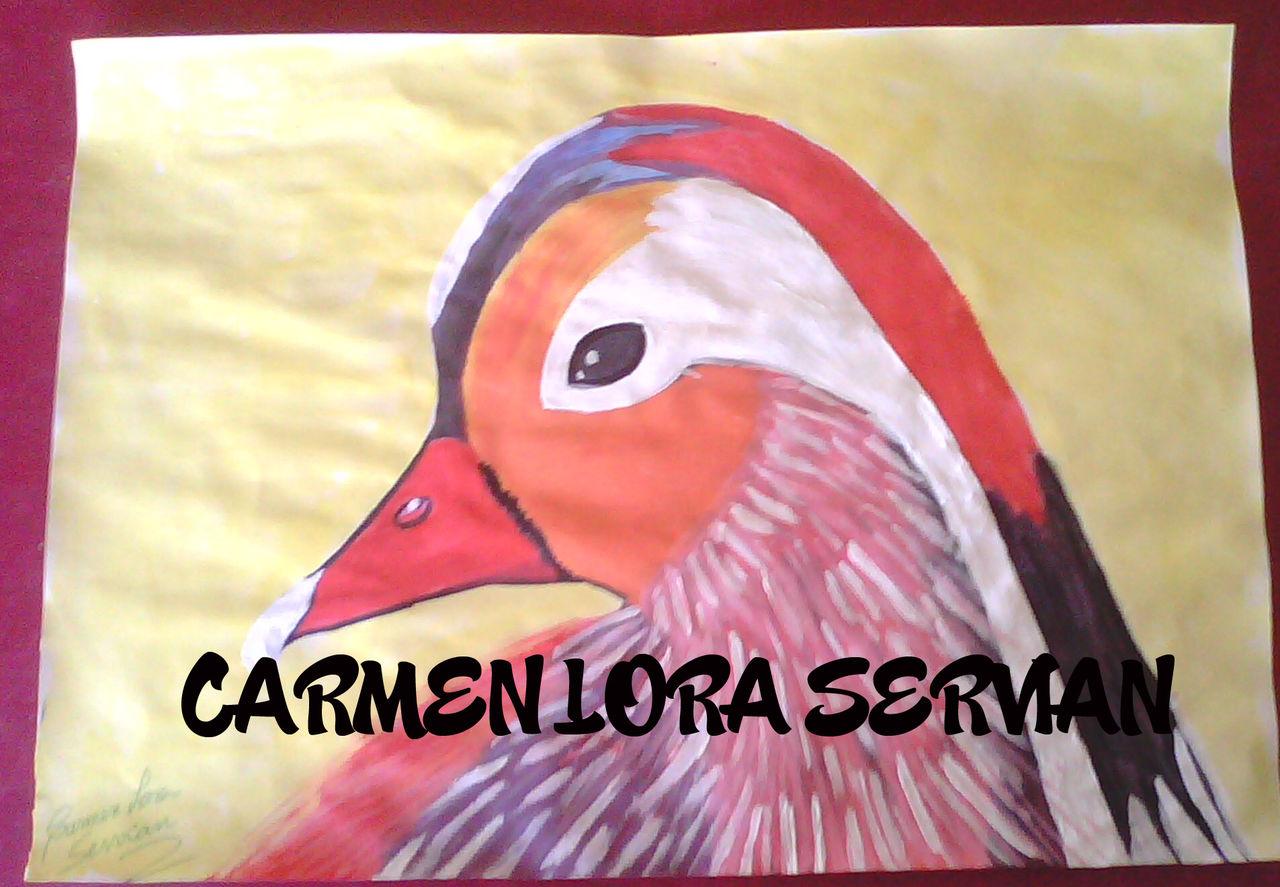 MARY CARMEN LORA SERVIAN PAJARO ARCOIRIS