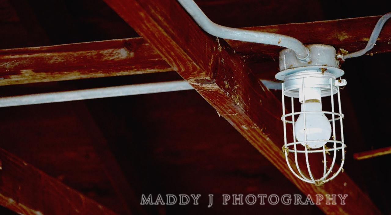 Matilda Johnson lightbulbshed