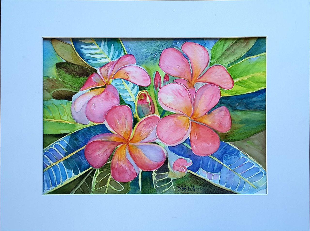 MENA Fleurs frangipanier