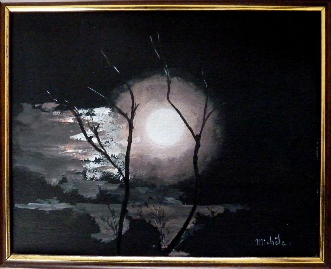Michele martin La nuit du loup.