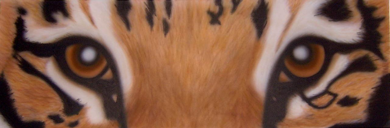 Murielle Paradis Les yeux du tigre
