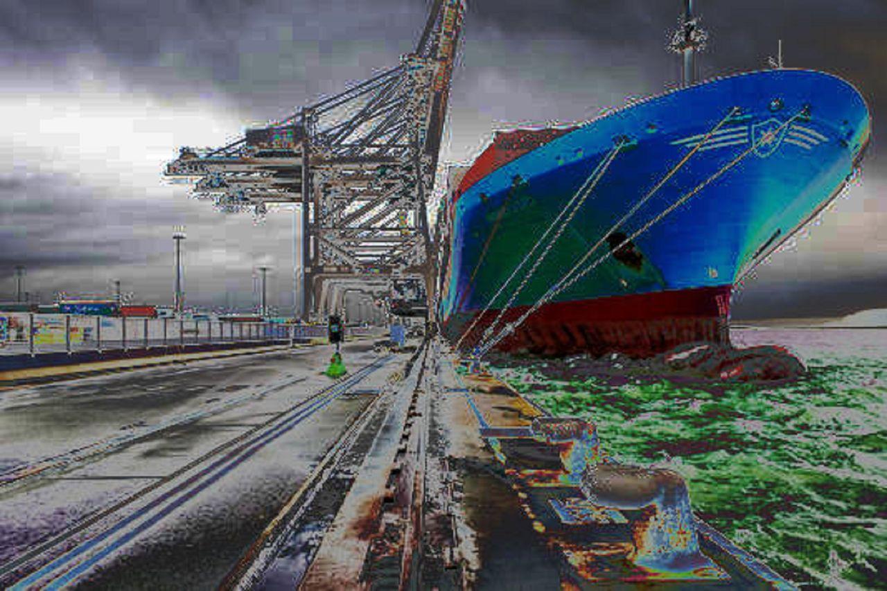 Niklas DC  Requin-Bateau (Windy pixels)