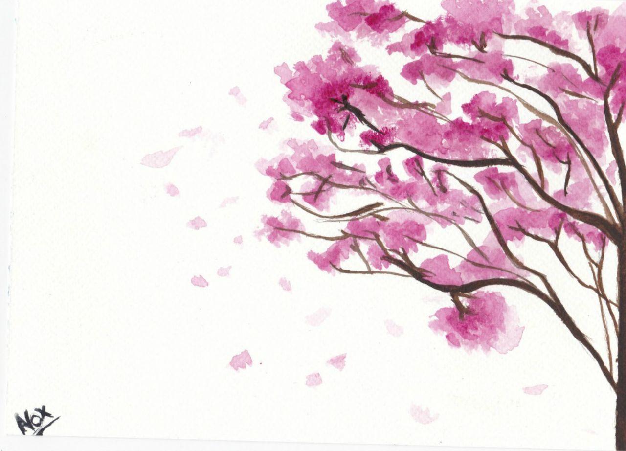 Fleur de cerisier (Noximilienne)