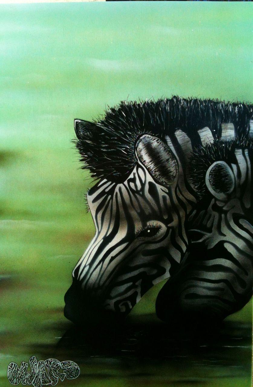 oward Spray Zebra2