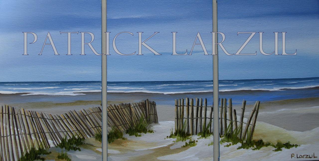 Patrick Larzul Chemin de ganivelles