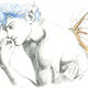 Piros Coltman - Elfe bleu